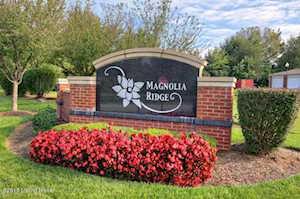 9403 Magnolia Ridge Dr Louisville, KY 40291