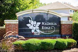 9415 Magnolia Ridge Dr Louisville, KY 40291