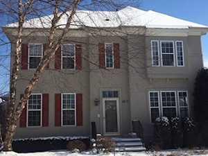 1817 Newton Avenue Park Ridge, IL 60068
