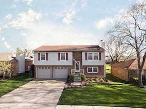 7312 Chestnut Tree Ln Louisville, KY 40291