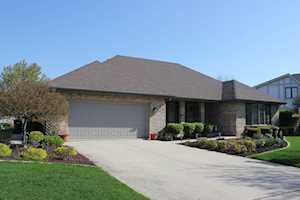 10734 Maue Drive Orland Park, IL 60467