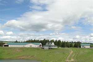 0 White Pine Flats Troy, ID 83871