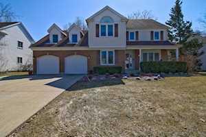 59 CHESTNUT Terrace Buffalo Grove, IL 60089