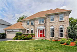 583 Apple River Dr Naperville, IL 60565