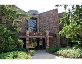 925 Spring Hill Dr #308 Northbrook, IL 60062
