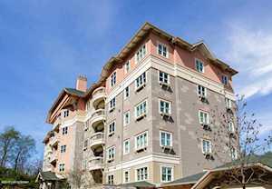 1409 Mockingbird Terrace Dr Louisville, KY 40207