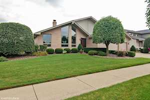 8469 Meadows Edge Trl Tinley Park, IL 60487