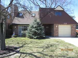 238 N Rose Ave Park Ridge, IL 60068