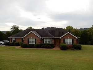 10615 Peonia Rd Clarkson, KY 42726