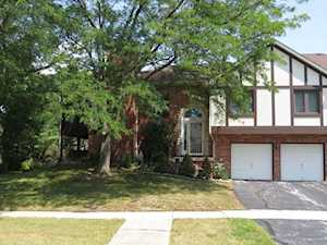 9926 Treetop Dr Orland Park, IL 60462
