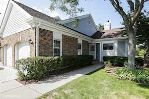 388 North SATINWOOD Terrace Buffalo Grove, IL 60089