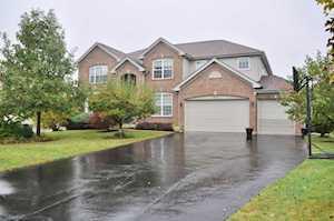 5802 River Birch Dr Hoffman Estates, IL 60192