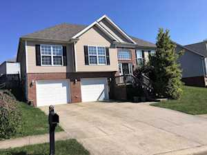 493 Streamview Dr Shelbyville, KY 40065
