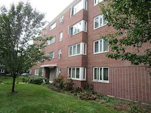 7212 Oak Ave #1SW River Forest, IL 60305