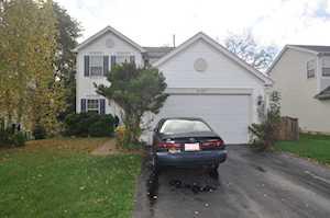 3107 Shenandoah Dr Carpentersville, IL 60110