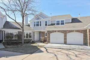 499 BANYAN TREE Lane #499 Buffalo Grove, IL 60089