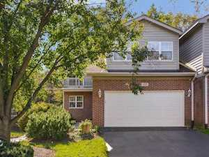 135 Willow Creek Ln Willow Springs, IL 60480