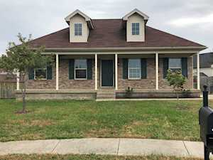 251 Crystal View Ct Mt Washington, KY 40047