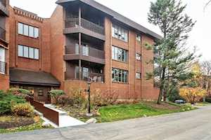 175 Boardwalk Place #301 Park Ridge, IL 60068