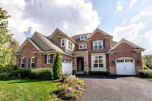 7231 Roxbury Ct Long Grove, IL 60060