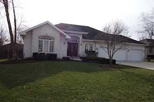 13211 W Choctaw Trl Homer Glen, IL 60491