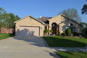 13005 S Ridgewood Dr Palos Park, IL 60464