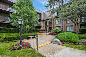 3 The Court of Harborside Dr #307 Northbrook, IL 60062
