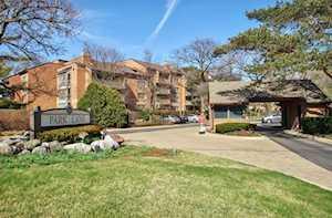 22 Park Ln #519 Park Ridge, IL 60068