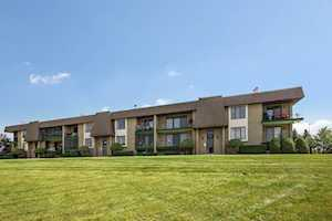 15724 Old Orchard Ct #1E Orland Park, IL 60462