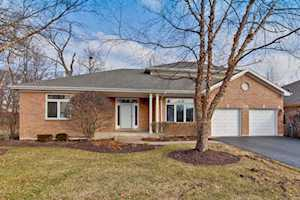 974 Sanctuary Ct Vernon Hills, IL 60061