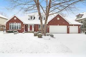 17345 Deer Creek Dr Orland Park, IL 60467