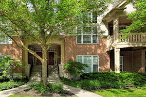 506 South Commons Ct Deerfield, IL 60015