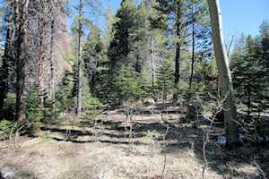 Lot 8 Aspen Lot 8 Block 2 Williams Tract #1 June Lake, CA 93529