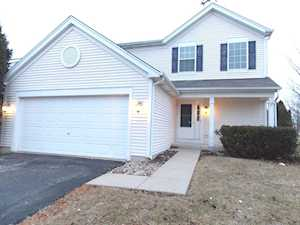 2 Flowerfield Ct Lake In The Hills, IL 60156