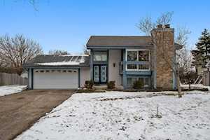 13940 W Timberlane Ct Homer Glen, IL 60491