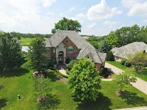 87 Ruffled Feathers Dr Lemont, IL 60439