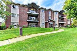 13079 Laurel Glen Ct #302 Palos Heights, IL 60463
