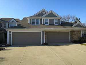 244 Woodstone Circle Buffalo Grove, IL 60089