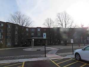 1375 Rebecca Dr #317 Hoffman Estates, IL 60169