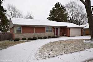 919 N Prospect Ave Park Ridge, IL 60068