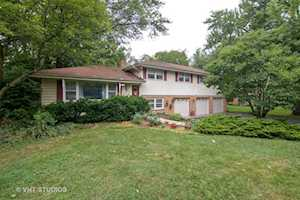 202 Elm St Prospect Heights, IL 60070