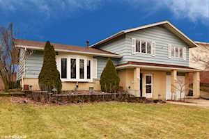 16806 Gaynelle Rd Tinley Park, IL 60477