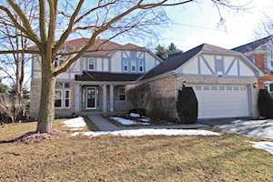308 Southfield Dr Vernon Hills, IL 60061