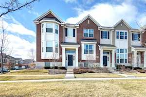 15316 Sheffield Square Parkway Orland Park, IL 60462