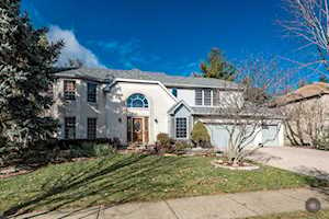 411 Knoch Knolls Rd Naperville, IL 60565