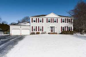 7 E Farmstead Ct Randolph Twp., NJ 07869