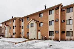 7 Cedar Ct #10 Vernon Hills, IL 60061