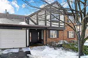 211 Stanhope Dr #C Willowbrook, IL 60527