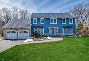 65 Forest Way Hanover Twp., NJ 07950