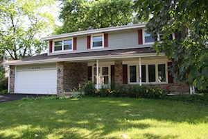 24w546 Meadow Lake Dr Naperville, IL 60540